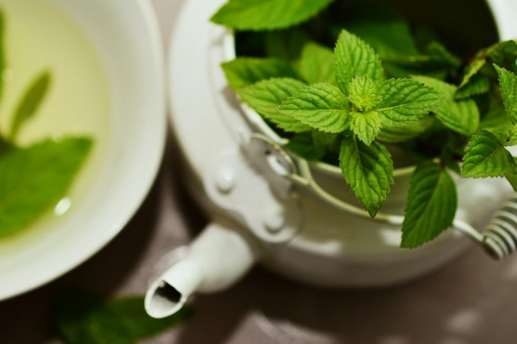Is Green Tea Better Than White Tea